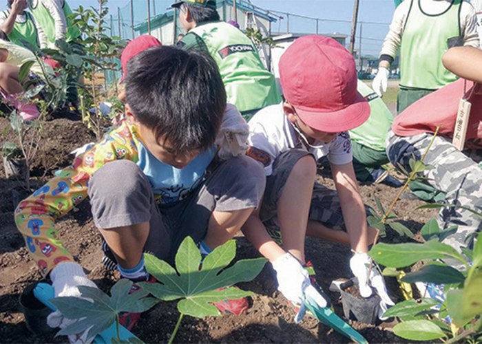 Scenes from our tree-planting festivals